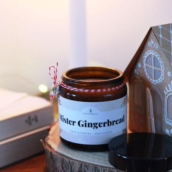 Mister Gingerbread